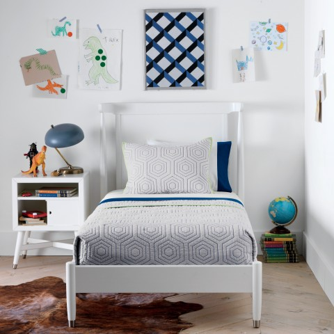 DwellStudio-Hicks-Quilt-Set